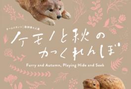 「ケモノと秋のかくれんぼ」  チームツチノコ彫刻家4人展