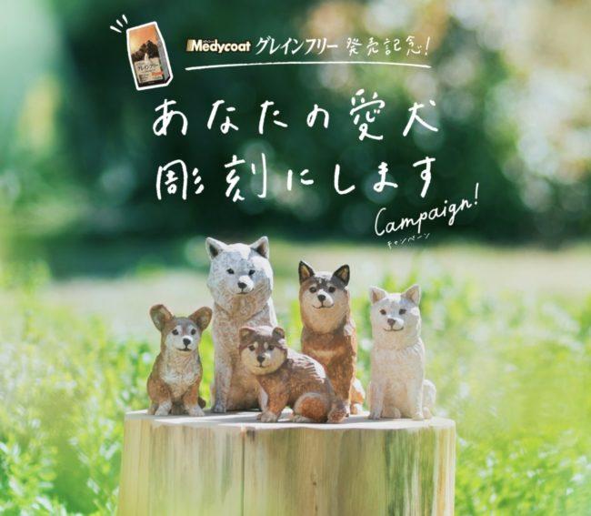 あなたの愛犬彫刻にしますキャンペーン